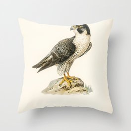 Peregrine Falcon (Falco peregrinus) illustrated by the von Wright brothers Throw Pillow