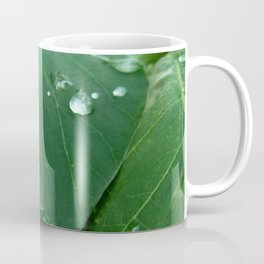 raindrop 5 photography Coffee Mug