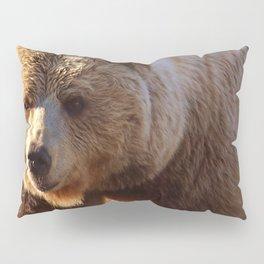 Grizzly Brown Bear  Pillow Sham