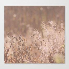 Dream whisperer Canvas Print