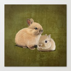 Portrait of two small bunnies Canvas Print