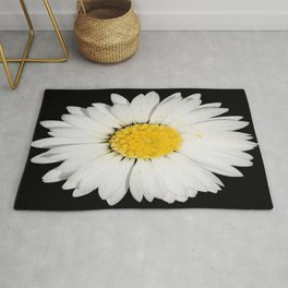 Top View of a White Daisy Isolated on Black Rug