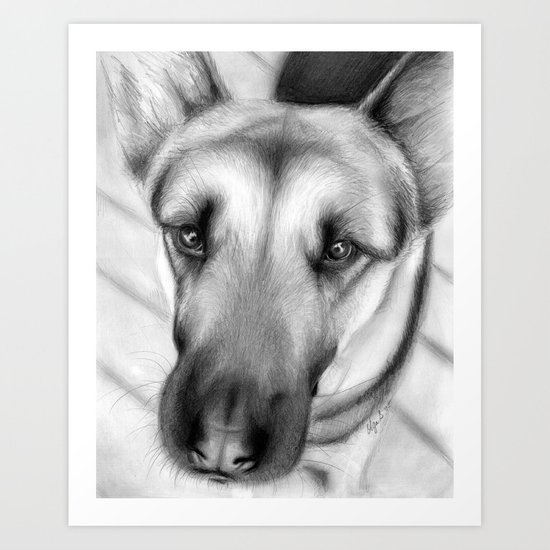 Dog Drawing German Shepherd Art Print