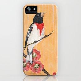 Rest Flowering Quince Rose-breasted Grosbeak iPhone Case