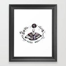 Midnight Moth Framed Art Print