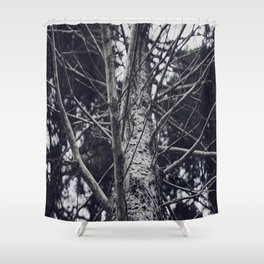 Grace Beneath The Pines II Shower Curtain