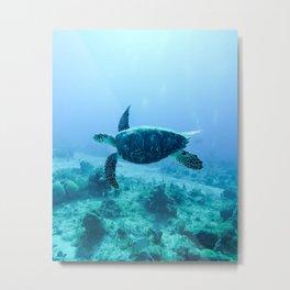 Sea Turtle Swimming Metal Print