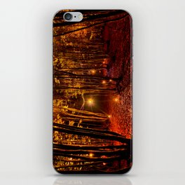 Electric Forest Disco iPhone Skin