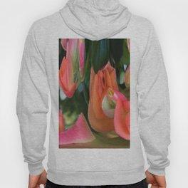 490 - Abstract Flower Design Hoody