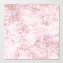 Pink dreams Canvas Print