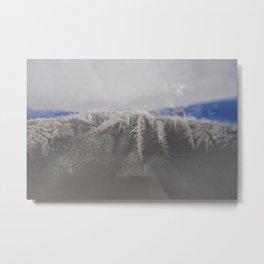 Freezy Metal Print