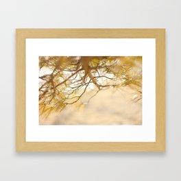 Pine Tree Love Framed Art Print