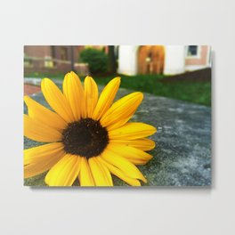 Lonely Sunflower Metal Print