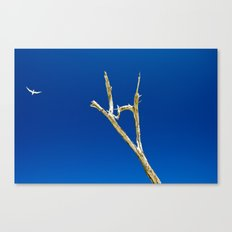 Soaring High in Blue Skies Canvas Print