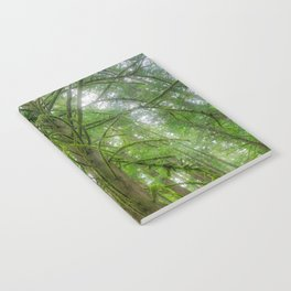 Ethereal Tree Notebook