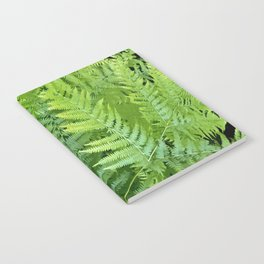 Lush green fern leaves, tropical forest illustration in vivid colors Notebook