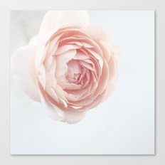 Rosey outlook Canvas Print