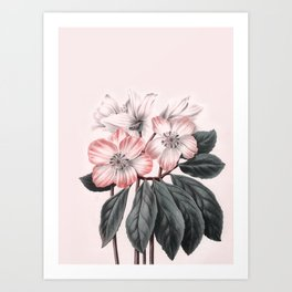 Flowers near me Art Print