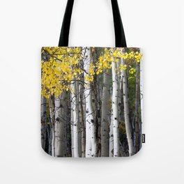 Yellow, Black, and White // Aspen Trees in Crested Butte Tote Bag