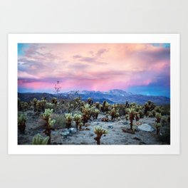 Desert Wonder Art Print