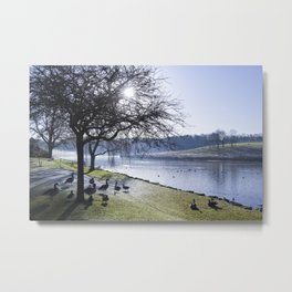 Misty Morning in Colour Metal Print