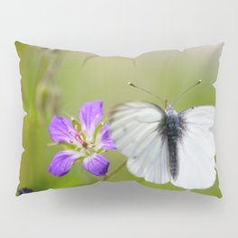 White Butterfly Natural Background Pillow Sham