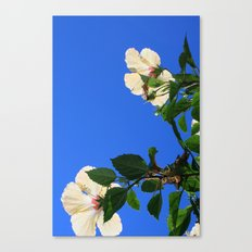 Summer Hibiscus Canvas Print