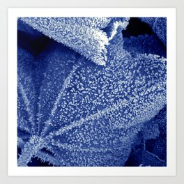 cold winter II Art Print