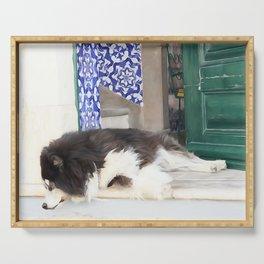 Wall art dog sleeping, street art, Portugal street, I'm lazy today......street dog and azulejos Serving Tray