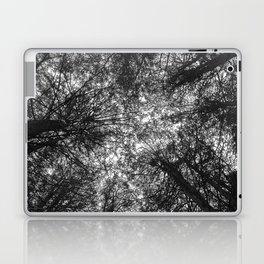 The Dark Forest Path Laptop & iPad Skin