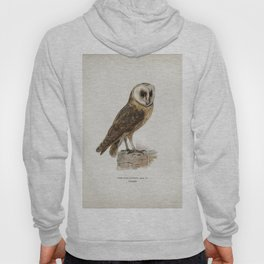Tyto alba guttata owl illustrated by the von Wright brothers Hoody