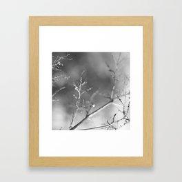 diamond tree Framed Art Print