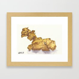 Ginger Mandrake Root Framed Art Print