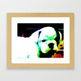 Runt Framed Art Print