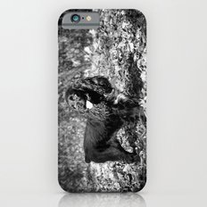 Rambunctious Slim Case iPhone 6s