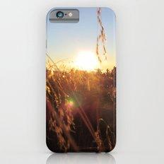 Wheat iPhone 6s Slim Case