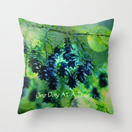 One Day At A Time . . . Throw Pillow