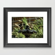 Rowdy Bird Bath Framed Art Print
