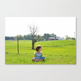 Cow Watcher Canvas Print