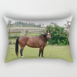 Brown horse standing in a field Rectangular Pillow