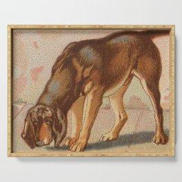 Vintage Bloodhound Dog Illustration (1890) Serving Tray