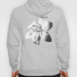 White Lily Black Background Hoody