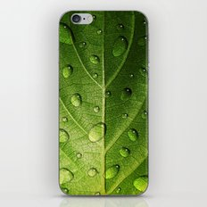 Think Green iPhone & iPod Skin