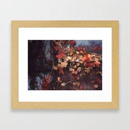 Autumn Leaves with Sun Framed Art Print
