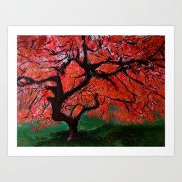 Japanese Maple Tree Acrylics On Canvas Board Art Print