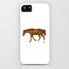 Phar Lap, sorrel/chestnut Thoroughbred (with halter) iPhone Case