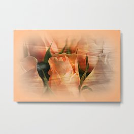 Hazy Apricot Beauty Rose Abstract Metal Print