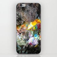 leopard iPhone & iPod Skins featuring LEOPARD by sametsevincer