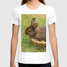 Little rabbit in the basket T-shirt