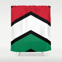 Chevron Hungary Flag Colors Shower Curtain